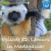 Episode 82: Lemurs in Madagascar