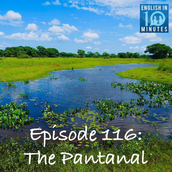 Episode 116: The Pantanal